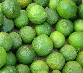 1.5 Kilo Kaffir Lime Fruits